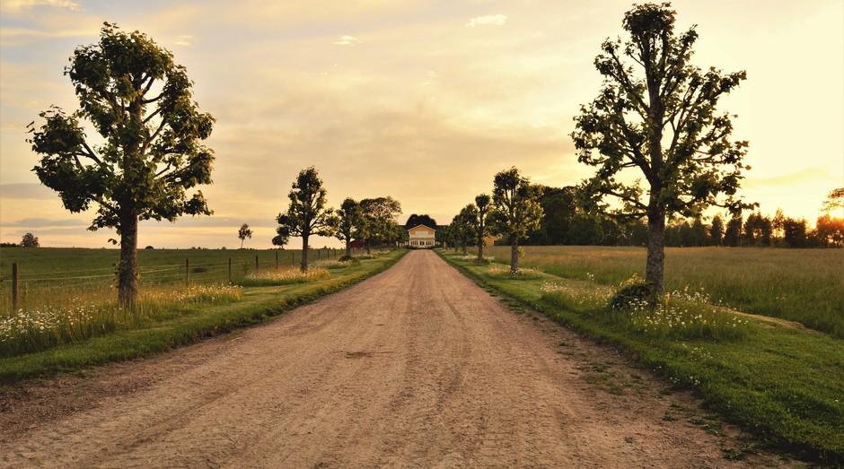 Campo, interior, fazenda, casa, jardim (Foto: Reprodução/Pexel)