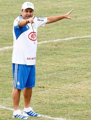 Gilson Kleina, Palmeiras (Foto: Gustavo Tilio)