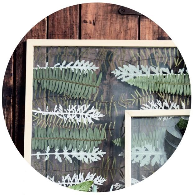 Agora é só levar as folhas a uma molduraria e escolher o acabamento que mais lhe agrada. Neste exemplo as plantas foram prensadas entre duas placas de vidro, mas também é possível acrescentar um paspatur ao quadro (Foto: Warren Heath / Bureaux.Co.Za)