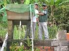 Vale do Paraíba é a região com mais casos de dengue no estado de SP