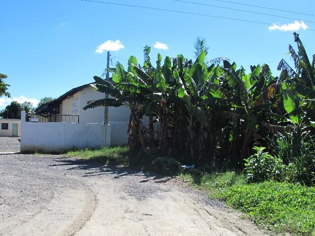 Um dos colégios eleitorais na zona rural de Eldorado fica ao lado de uma plantação de banana (Foto: Mariane Rossi/G1)