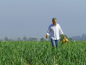 Produtores da região relatam dificuldades do plantio de cebola (Foto: Ely Venâncio/EPTV)