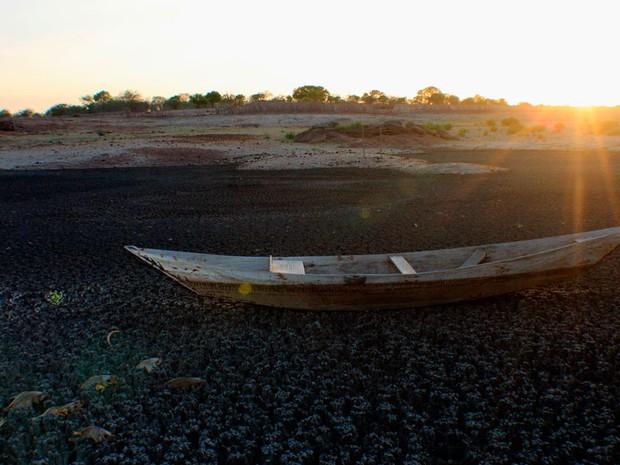 Açude na cidade de Campo Grande secou e matou todos os peixes (Foto: Aldair Dantas)