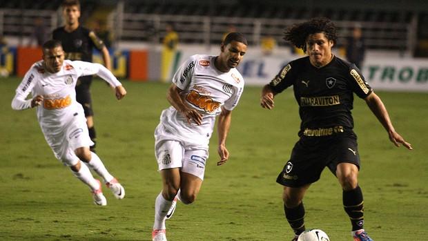 Marcio Azevedo Botafogo x santos (Foto: Lucas Baptista / Ag. Estado)