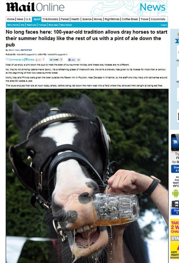 Cavalos beberam cerveja para marcar início das férias. (Foto: Reprodução/Daily Mail)