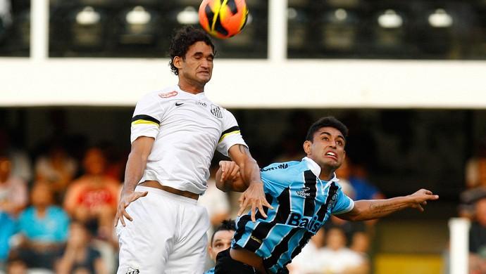 Willian Jose, Santos x Grêmio (Foto: Ricardo Saibun/Agência Estado)