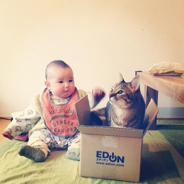 Bebê japonês e seu gato de estimação (Foto: Reprodução / Instagram @makicocomo)