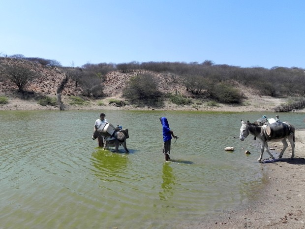 Irmãos contam que são duas viagens por dia de 30 minutos para buscar água (Foto: Taiguara Rangel/G1)
