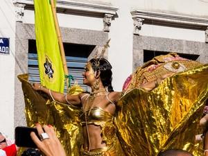 Foliões curtem Cordão do Boitatá na Rua do Mercado, no Centro. (Foto: Tata Barreto/Riotur)