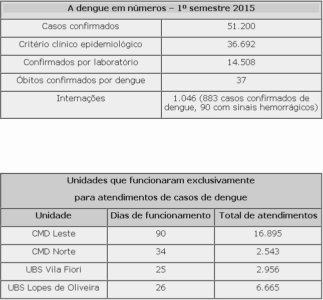 Confira o balanço da dengue na cidade (Foto: Divulgação)