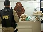 Três são presos com 23 kg de cocaína em ônibus de RO que seguia para AM