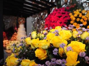 Rosas amarelas em um arranjo de floral; a cor é destaque da Expoflora que escolheu detalhes das cores da Copa do Mundo como destaque para a edição (Foto: Raul Pereira/G1)