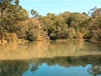 Parque abriga inúmeras espécies de animais e plantas (Foto: Reprodução/RBS TV)
