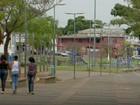 Feira da Economia Solidária terá trio elétrico e shows em Campinas, SP