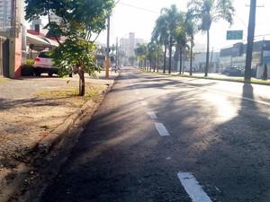 Grupo fez ciclofaixa na Avenida Independência em Piracicaba (Foto: Thainara Cabral/G1)