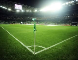 Palmeiras arena (Foto: Marcos Ribolli)