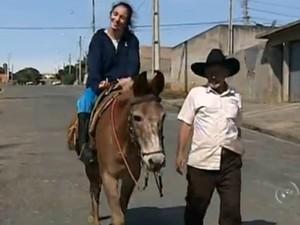 Burro chamado Dourado leva jovem à Apae de Pilar do Sul (Foto: Reprodução/ TV TEM)
