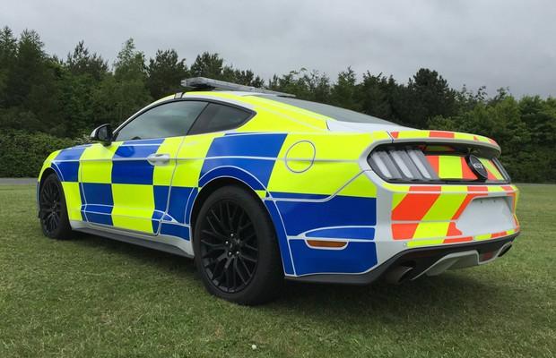 Mustang GT de polícia é equipado com motor V8 5.0 capaz de gerar 441 cv de potência (Foto: Divulgação)