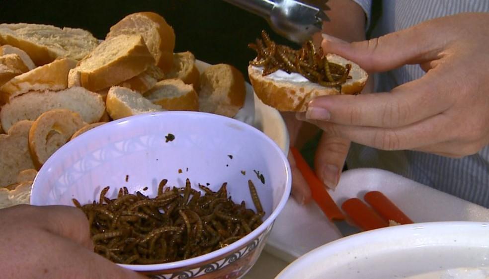 Torrada com patê de larvas de besouro é servida no café da Unesp em Jaboticabal, SP (Foto: Antônio Luiz/EPTV)