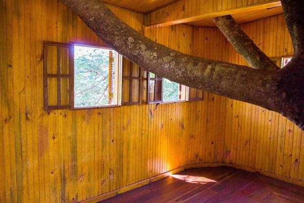 casa-na-árvore (Foto: Divulgação)