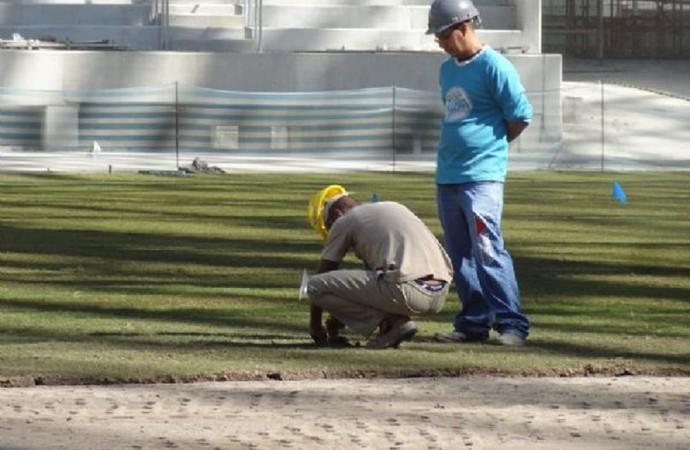 Operários realizam o plantio e a irrigação do gramado (Foto: Thiago Fatichi/Divulgação)