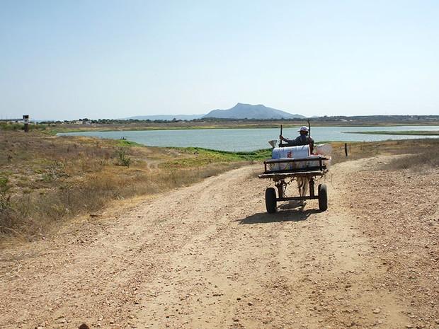 Carroceiros ainda buscam água no quase seco açude Itans, em Caicó (Foto: Anderson Barbosa/G1)