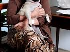 Vera Loyola apresenta sua cadelinha, Tererê, em fotos exclusivas para o EGO