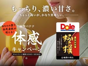 Bananas são vendidas por quase R$ 13 no Japão (Foto: Reprodução/Dole)