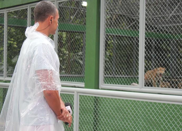 Tensão momentos antes de entrar no recinto da onça (Foto: Katiúscia Monteiro/ Rede Amazônica)