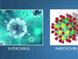 Médicos investigam se vírus pode causar doença (Foto: Reprodução/ TV Bahia)