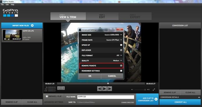 Marque Remove Fish Eye para eliminar esse feito da imagem selecionada (Foto: Reprodução/Juliana Pixinine)