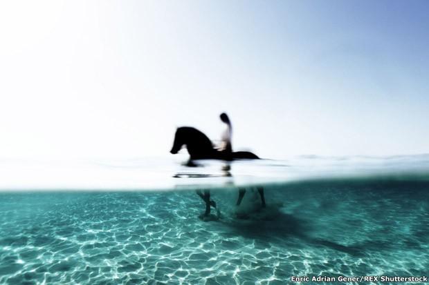 """3.""""Não acredito que eu seja um fotógrafo especializado em fotos submarinas. Eu sou um amante do mar que adora tirar fotos"""", disse Gener (Foto: Enric Adrian Gener/REX Shutters)"""
