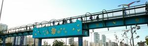 Passarela da Washington Soares ganha grafite do artista Narcélio Grud