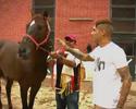 Futebol e hobby: Guerrero batiza cavalos de Pacaembu e Rubro-Negro