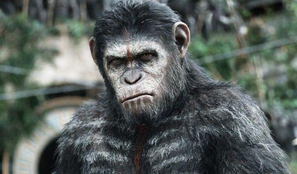 O ator Andy Serkis no papel do César de O Planeta dos Macacos (Foto: Reprodução)