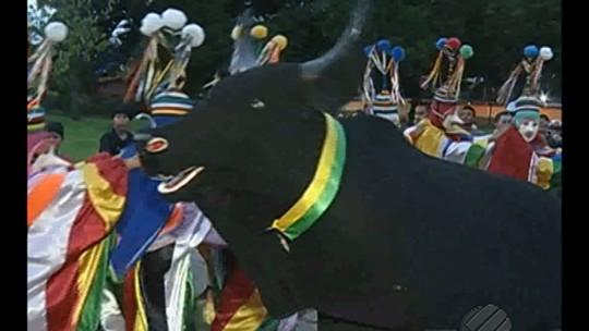 Boi-bumbá e 'cabeçudos' fazem carnaval folclórico em cidade do Pará