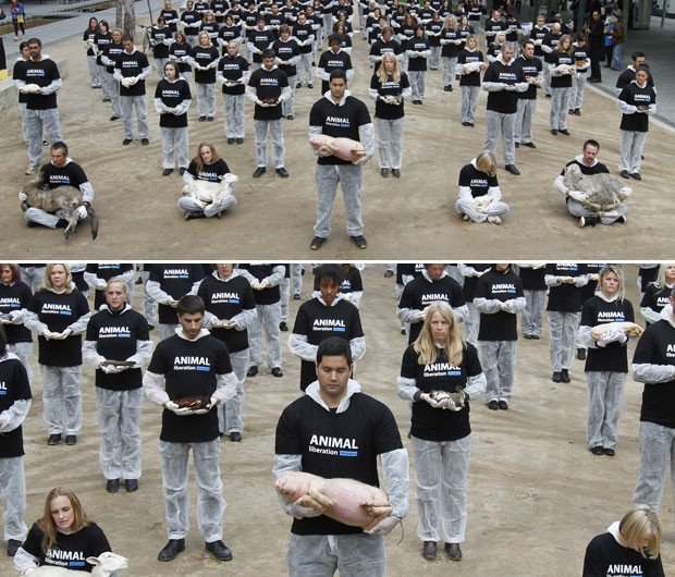 Animal Liberation Victoria: Contra Crueldade Animal, Grupo Posa Com 100