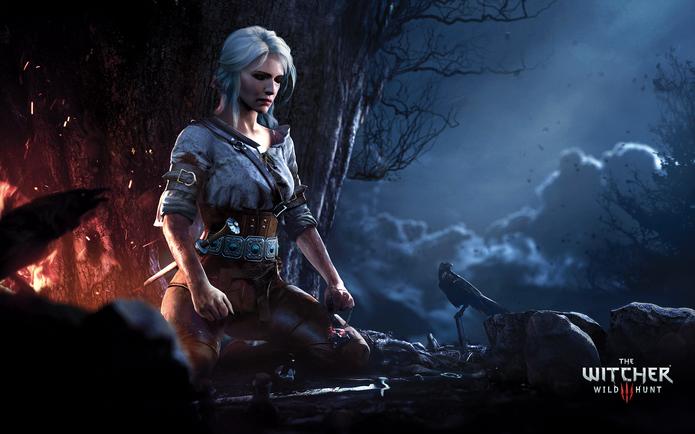 The Witcher 3 Wild Hunt (Foto: Divulgação/CD Projetk RED)