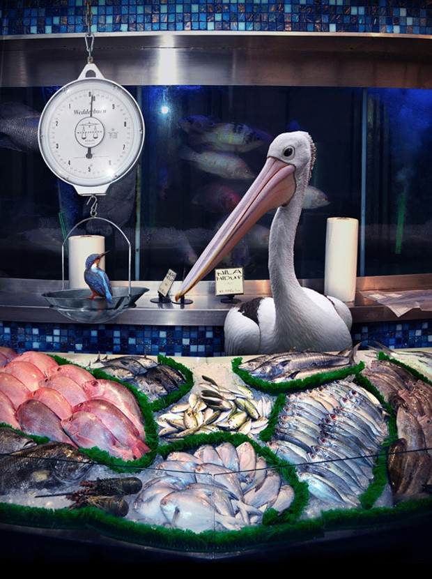 Pelicano na séria 'Garden Fresh' (Foto: Agan Harahap/Divulgação)