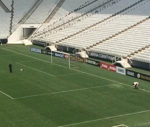 Gramado Arena Corinthians (Foto: Marcelo Hazan)