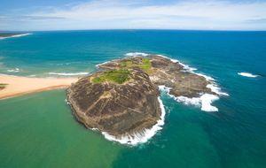 Cinco lugares para praticar mergulho no Brasil