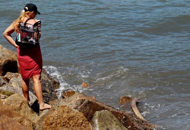 Moradores acreditam que o animal que encalhou na orla de Santos há pelo menos dez anos. O material foi recolhido por especialistas e passará por uma análise. Não é a primeira vez que vestígios foram encontrados nas praias da região. Em Iguape, no Vale do Ribeira, pesquisadores encontraram ossos de baleia de 6 mil anos. (Foto: Nirley Sena/A Tribuna)