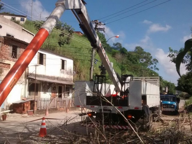 Vítimas trabalhavam em um guindaste que fazia a poda de árvores (Foto: Norma Cristina Braga de Oliveira/Arquivo pessoal)