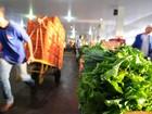 Mercado livre na Ceasa do DF passa a abrir às sextas-feiras