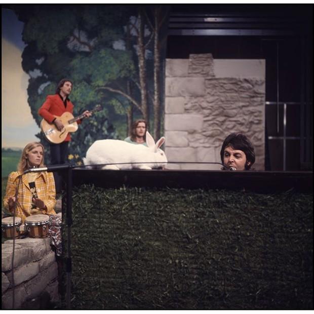 Paul McCartney posta foto antiga com coelho em cima do piano para desejar Feliz Páscoa (Foto: Instagram/Reprodução)