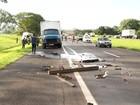 Acidente entre caminhões deixa motorista ferido em rodovia de Uchoa