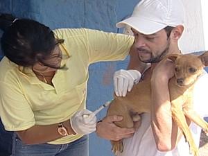 Cães e gatos devem se proteger contra a raiva animal (Foto: Reprodução/TV Integração)