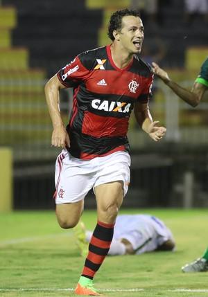 Leandro Damião gol flamengo (Foto: Gilvan de Souza / Flamengo)