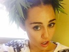 Miley Cyrus polemiza ao posar com plantas de maconha no cabelo