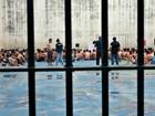 OAB processa Governo do AM por falta de ações no sistema prisional